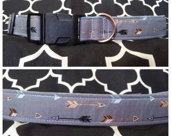 Shoot For the Sky Dog Collar / Martingale
