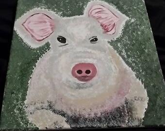 Distrusting Pig