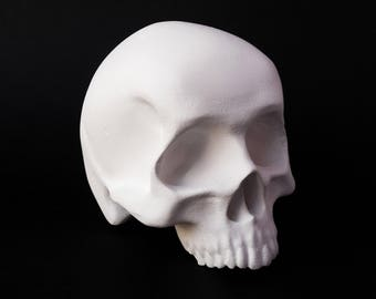 Blank White Unpainted SKULL Sculpture - Paint it Yourself