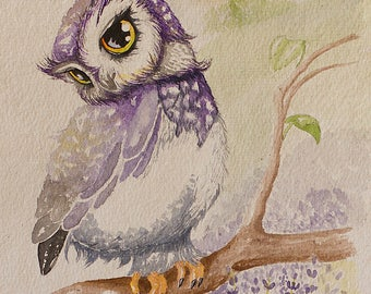 Little owl - original painting