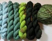 DESTASH listing of Outlander Minis at 30% OFF (200 grams/920 yards total) -- Hand Dyed SW Merino/Nylon 4-Ply Sock -- Outlander Assortment