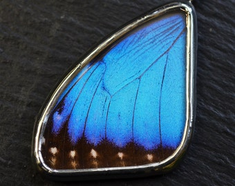 Real Butterfly Wing Necklace. Real Butterfly Wing Jewelry. Blue Morpho Helenor Montezuma. Emperor Morpho.