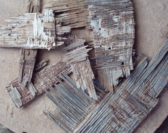 Old Textured Aged Shaped Plywood Wood Pieces for Crafts Assemblage Mixed Media Supplies Natural Organic Found Object
