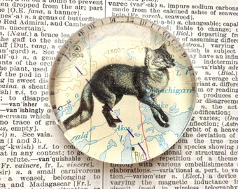 Fox Magnet - Animal Magnet - Jumbo Glass Magnet - Map Magnet - Fox Gift - Refrigerator Magnet Office Magnet - Fox Decor - Woodland Animal