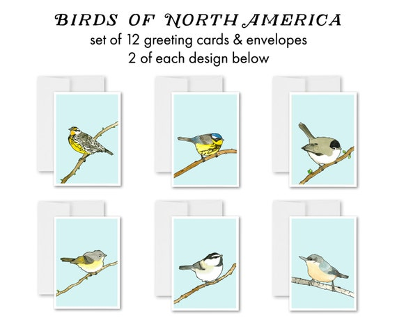 greeting cards, greeting card set, blank inside, birds, bird watercolor, birds of north america, bird cards, modern - Birds of North America