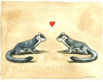 Sugar Glider   Love   -Original Watercolor painted print~  Can be Custom painted to match your Gliders!!