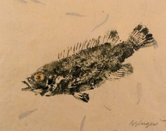 ORIGINAL 8 X 10 Matted Salt Water real Cunner #3 GYOTAKU Beach House fishing Art ( Fish Rubbing ) on hand made Paper
