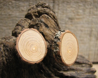 XXL Pine Rustic Twig Wooden Stud Earrings by Tanja Sova