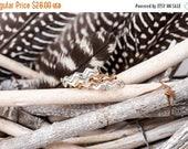 40% Off Sale Bronze Birds in Flight Ring   Nature Inspired   Bronze Stacking Ring  Zig Zag Ring