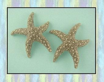 Beads Starfish ~ Ocean Life Animal Beach Lagoon Sand Aquatic ~ Silver Metal ~ 2 Hole Sliders QTY 2     (SKU 526200657)