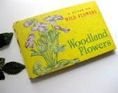 Vintage Guide to Wild Flowers, Woodland Flowers, Worn Cover, Gorgeous Illustrations, Whitman, 1945