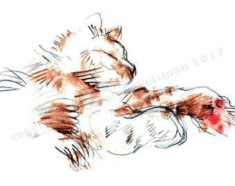 Merph Chillin' - Cat card