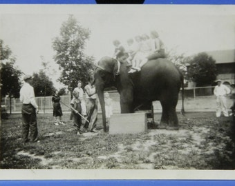 Children Riding Tillie The Elephant at the Zoo 1938 B & W Vintage Photo Snapshot 15969