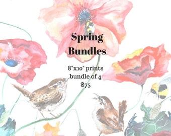 Botanical Bird Giclee Prints, Art Prints, Poppy, Bird Theme, Spring Home Decor, Shabby Chic, Instant Art Wall, Colorful Art, Happy Art