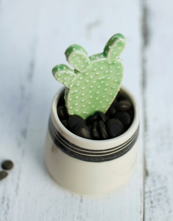 faux cactus plant with container