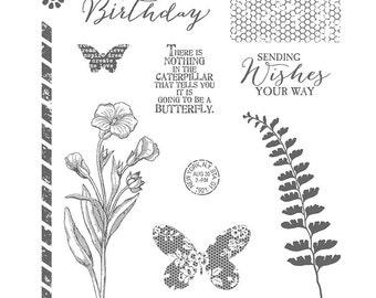 Stampin' Up! new Butterfly Basics photopolymer stamp set