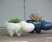 Desk Planter - Hippo planter - succulent planter - retro plant pot - animal lover gift - desk planter - indoor gardening