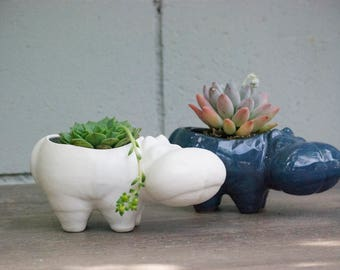 Desk Planter - Hippo planter - succulent planter - retro plant pot - animal lover gift - desk planter - indoor gardening
