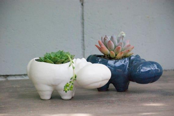 Hippo ceramic planters Desk Plants Planters for succulent