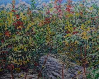"Original Oil Pastel Drawing Grease Crayon Floral Landscape Eastern Townships Quebec Canada By Audet "" A wild place in the garden "" 16x 21.5"