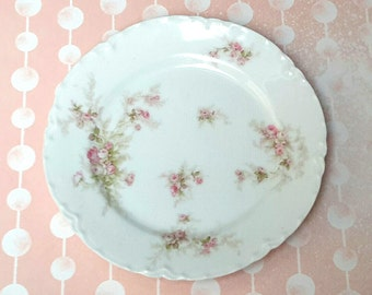 ANTIQUE Limoges Petite French Dessert or Appetite Plates (Set of 10)