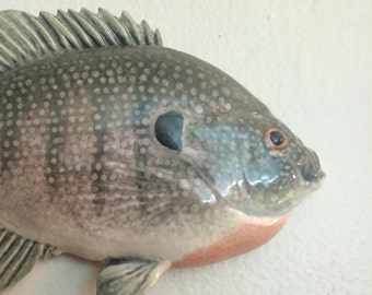 Large Bluegill Pink and Green - 0104