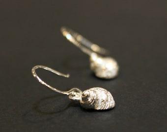 Shell Dainty Sterling Silver Earrings