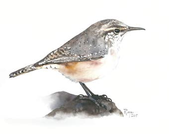 ORIGINAL Watercolor Bird Painting / Rock Wren