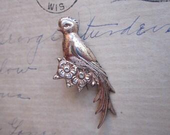 vintage QUETZAL bird brooch - marked MEXICO SiLVER - silver bird brooch - C clasp