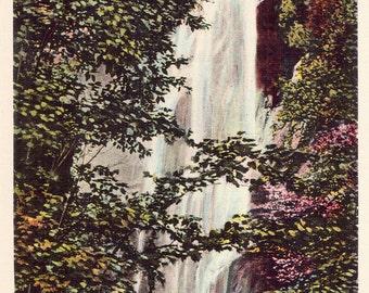 Rainbow Falls Keene Valley NY Vintage Unused Postcard Tinted Style