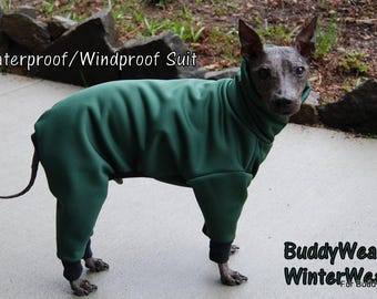 "15"", 15.5"", 16"" BuddyWear Rainproof- Windproof - WinterWear™  for Italian Greyhounds and all small dogs.  OOAK - Same Day Shipping."