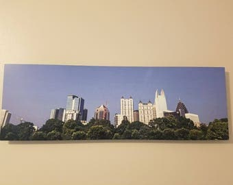 Panoramic Piedmont Park Atlanta Skyline Metal Photograph with Floating Frame