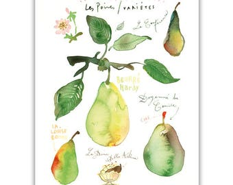 Pear print, Watercolor painting, Kitchen art print, Fruit illustration, Botanical wall decor, Food art, Green home decor, Pear tree branch
