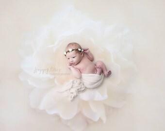 White Flower Crown, Baby Headband, Newborn Photo Prop, Photography Prop, Baby Girl Prop, Flower Halo Headband