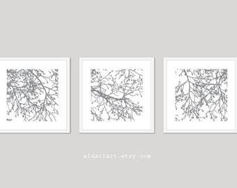 Modern Tree Branches Art Prints - Set of 3 - Modern Nature Wall Art - Slate Grey and White - Contemporary Minimalist Tree Trio Wall Art