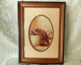 Vintage Raccoon Photo Print