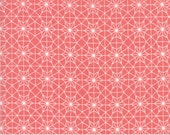 Olive's Flower Market - Cathedral Lace in Pink by Lella Boutique for Moda Fabrics