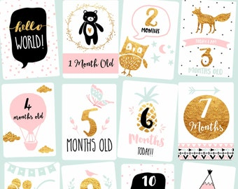 Baby Milestone Month Cards - Baby photography photo props Printable Gold Pink Baby Girl Monthly Milestone Cards Gift for her Christmas
