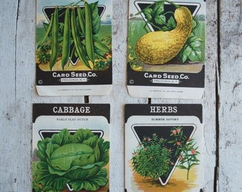 Lot of 4 Antique vintage 1920s Card Seed Co. seed packets Fredonia, NY Cabbage Herbs Savory Squash Bush Beans
