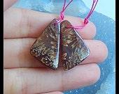 New,Ammonite Fossil Gemstone Earring Bead,26x15x5mm,5.4g