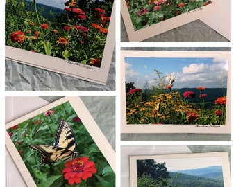 Set of 5 Butterfly Note Cards / Blank Greeting Cards with Butterflies / Stocking Stuffer / Gift for Her / Sympathy Card / Birthday Card