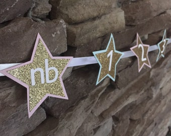 Twinkle twinkle little star monthly photo banner/ pink mint and gold stars/ first birthday banner