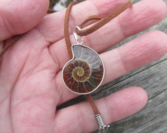 Sale, Very Beautiful Ammonite Fossil Pendant, 925 Silver with Suede Cord