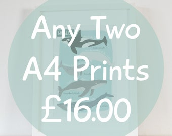 Any Two A4 Prints Special Offer, Multi Buy Art Prints, Childrens Wall Art, Kids Artwork, Childs Bedroom Art Prints, Space Art, Dinosaur Art
