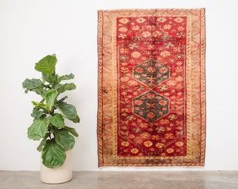 SAROU 4x6 Hand Knotted Persian Wool Rug