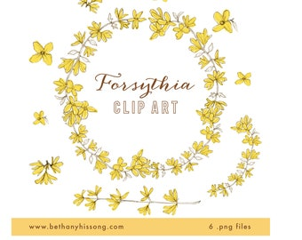 Spring Forsythia Digital Clip Art