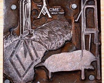 Vintage Copper Acme Mole Trap Printer's Block Letterpress