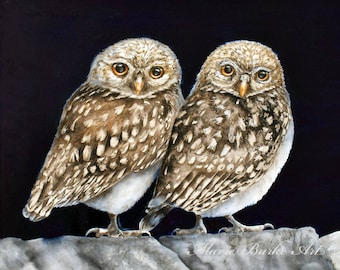Two Little Owls -  Large fine art print, watercolour painting, owl painting, owls, little owl, birdpainting