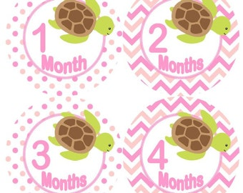 Baby Monthly Milestone Growth Stickers in Pinks with Green Sea Turtles Nursery Theme MS930 Baby Shower Gift Baby Photo Prop