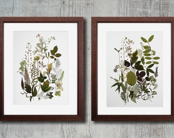 Set of 2 herbarium prints Botanical prints Pressed flower art  botanical print set Dried flowers  wall art plant flower unframed art set